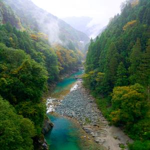 秋の祖谷川 (徳島県 三好市 西祖谷山村)