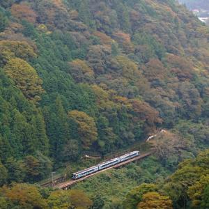 色付く山間を行く (徳島県 三好市 山城町)