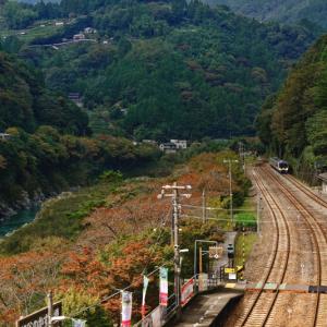 秘境への玄関口 大歩危駅の秋の風景 (徳島県 三好市 西祖谷山村)