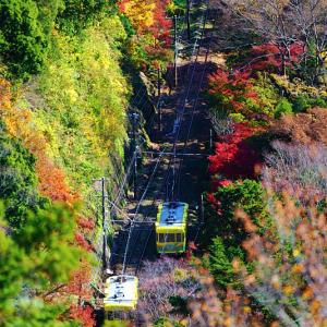 すれ違う高尾山ケーブルカー (東京都 八王子市)