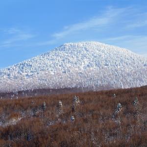 前嶽へと続く樹氷のグラデーション (八甲田山/青森市)