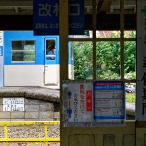それがなんじゃい! (上信電鉄 南蛇井駅/群馬県 富岡市)