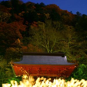 秋に燃ゆる中禅寺 (栃木県 日光市)