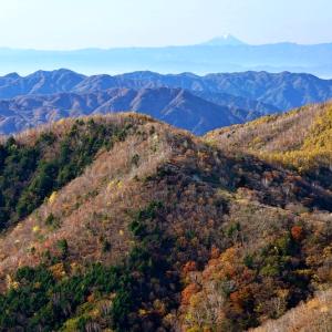 秋の尾根 (半月山栃木県 日光市)