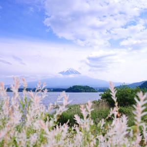 白い湖畔の風景 (山梨県 富士河口湖町)