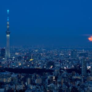 スカイツリーとオレンジムーン (東京都 豊島区)