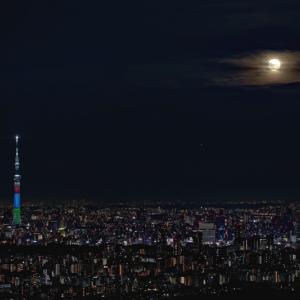 東京おぼろ月夜 (東京都 豊島区)