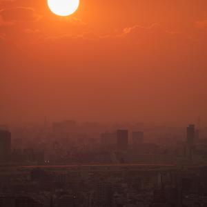 中川と夕陽の赤い空 (千葉県 市川市)