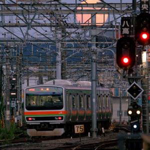 お月見列車 (東京都 八王子市)