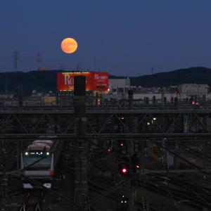 多摩丘陵に浮かぶ月 (東京都 八王子市)