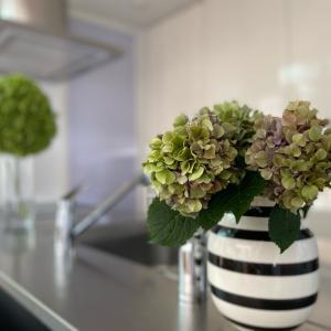安らぐ部屋にするための長くお花を楽しむ方法