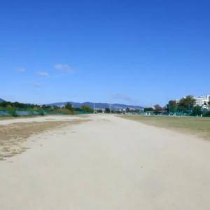 武庫川コスモス園とグラベルを走って秋をゆるりと満喫ですか?