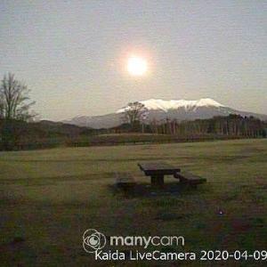 2020年4/8~開田高原~野鳥
