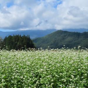 2020年9/9~開田高原