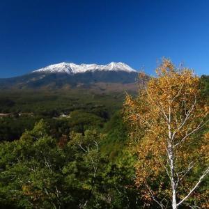2020年10/21現在~御嶽山と野鳥