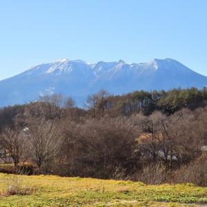2020年11/23~開田高原ーオオマシコ