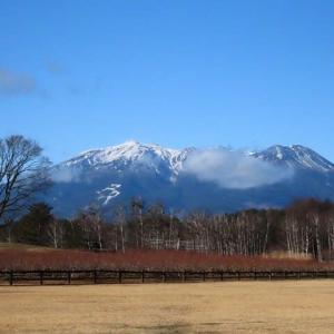 2020年12/5~開田高原~オオマシコ