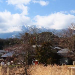 2020年12/12~開田高原の野鳥