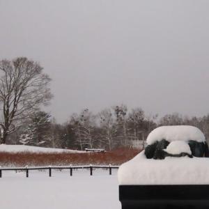 2020年12/17~開田高原ー積雪24cm