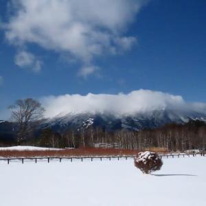 2020年12/18~開田高原の霧氷と野鳥