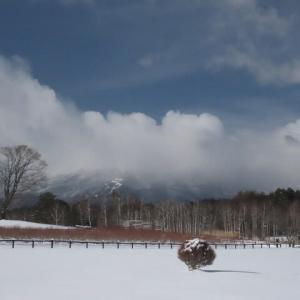 2020年12/19~開田高原積雪20cm