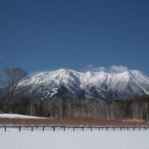 2020年12/21~御嶽山と霧氷