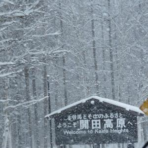2021年1/1~今日の開田高原雪景色