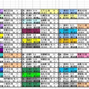 2021 日経新春杯 出馬表と分類表