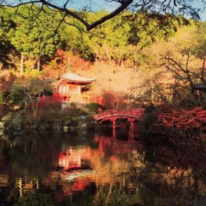 12月7日 醍醐寺に行って来ました! 着物レンタル 夢京都 清水寺店