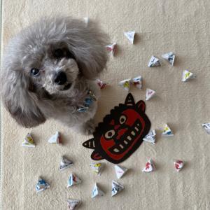 ニコの手作り犬ごはん 1.27-1.29