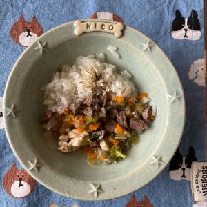 【ニコの手作り犬ごはん】6.27-6.28