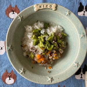 【ニコの手作り犬ごはん】6.29-6.30