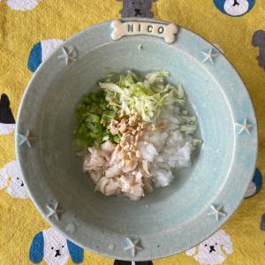 【ニコの手作り犬ごはん】7.5-7.6
