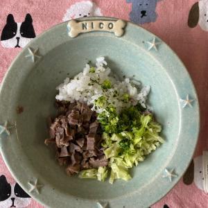 【ニコの手作り犬ごはん】8.1-8.3