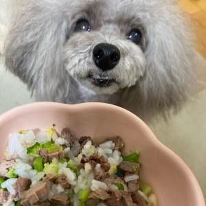 【ニコの手作り犬ごはん】10.7-10.8