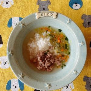 【ニコの手作り犬ごはん】10.25-10.26