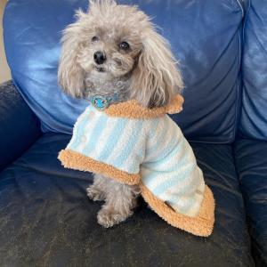寒さ対策〜着る毛布を購入