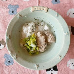 【ニコの手作り犬ごはん】11.19-11.20