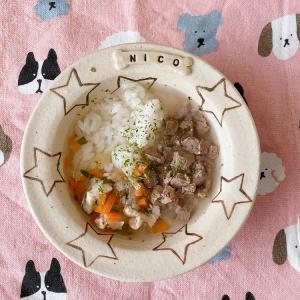 【ニコの手作り犬ごはん】2.21-2.22