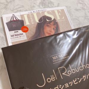 ロブションのレジカゴお買い物バッグ