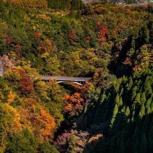 TAR 高千穂あまてらす鉄道からの紅葉