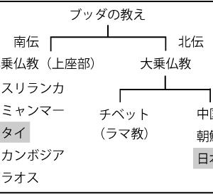 ハーブボール講義のネタ帳47 名医でも治せぬ病(カルマ)○最終章