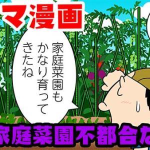 漫画Youtube 家庭菜園不都合な真実