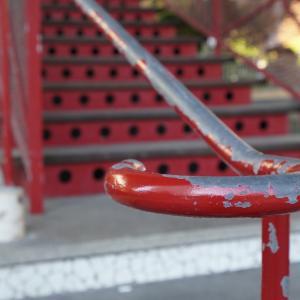 赤い手すり&エノキタケの成長記録