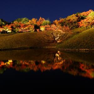 京都・梅小路公園・朱雀の庭の紅葉祭り
