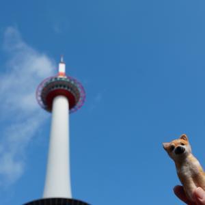 京都タワーとシバちゃん