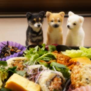 お弁当、ちょうだい!