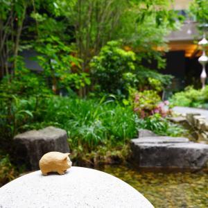 ブーちゃんの癒やし場所~京都烏丸御池・新風館リニューアルオープン・中庭