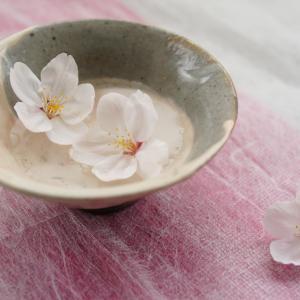 桜の花びらで遊ぶ