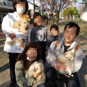 きらんトライアル報告(4/12~)